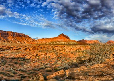 IMG_2887_stitch sm Mojave